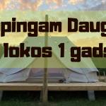 Kempingam Daugavas lokos 1gads!